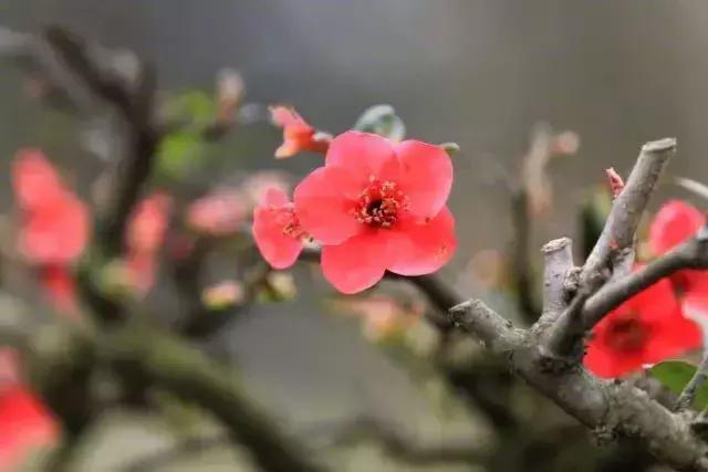 古训:始于立心,得于人和,顺于天道,成于勤恳